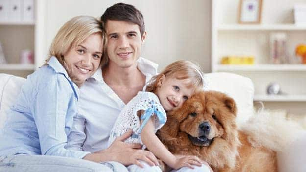 Wills & Trusts dog-young-family Direct Wills Dunstable